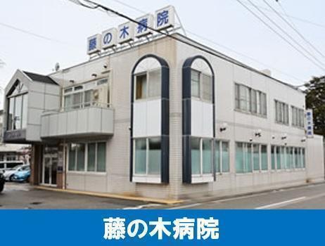 藤の木病院